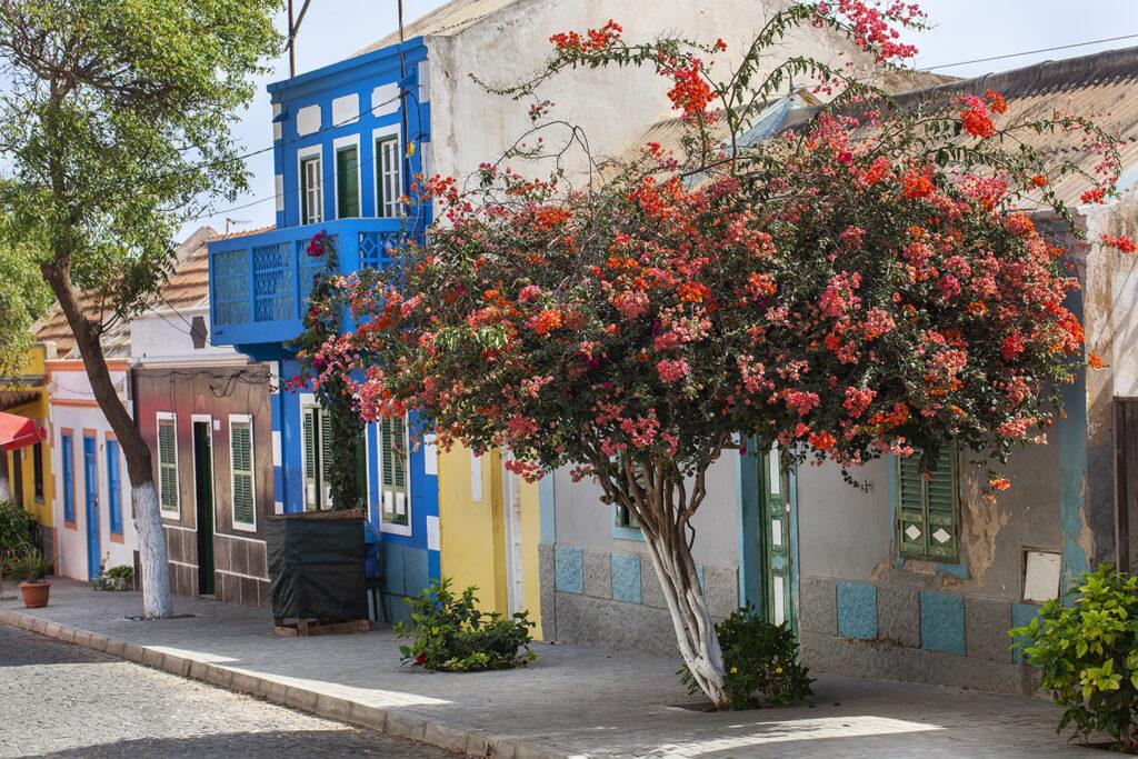 Een kleurrijke straat in de stad Bofareira op het eiland Boa Vista in Kaapverdië