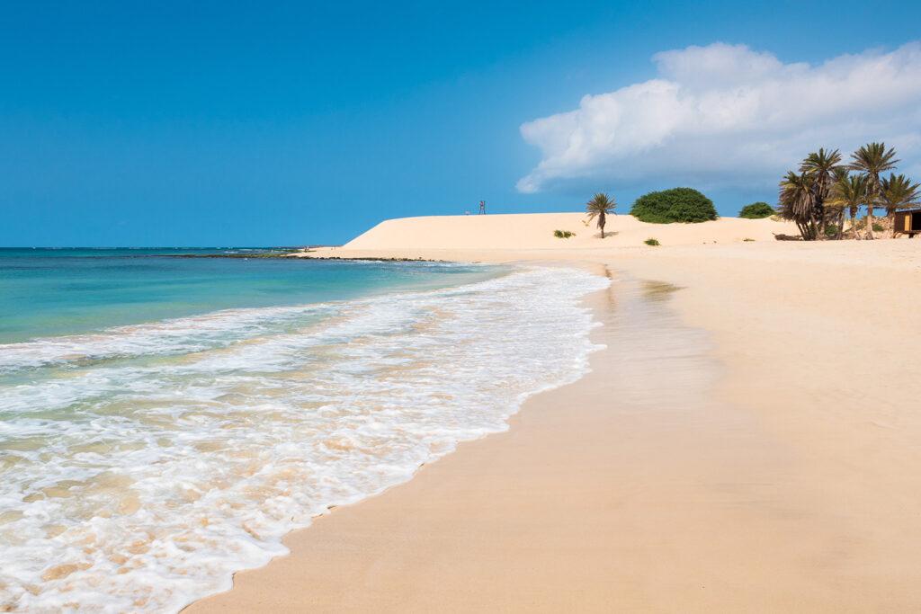 Palmbomen op het strand van Boa Vista, Kaapverdië
