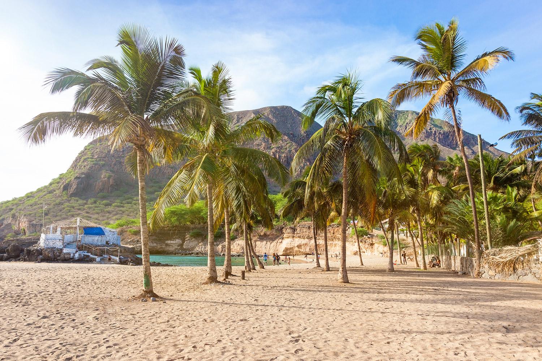 Palmbomen op het Kaapverdische eiland Santiago