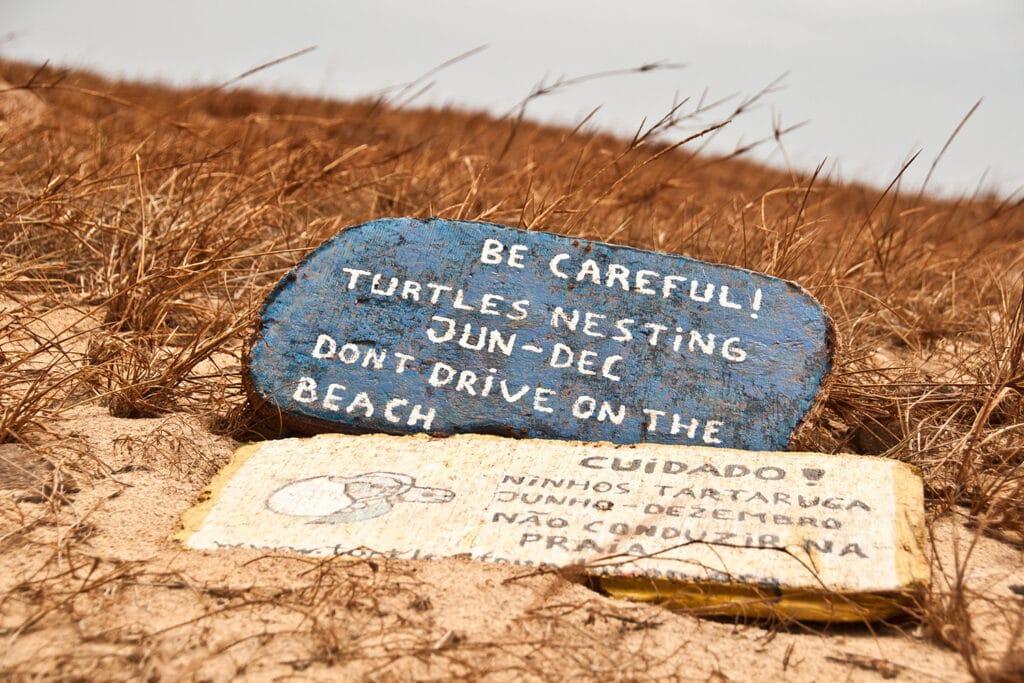 waarschuwingsbordje op het strand van Boa Vista in Kaapverdië om te waarschuwen voor schildpadden.