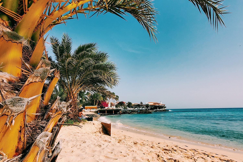 Relax onder een palmboom op het strand van Santa Maria op het eiland Sal